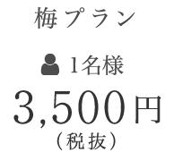 3,500円(税抜)